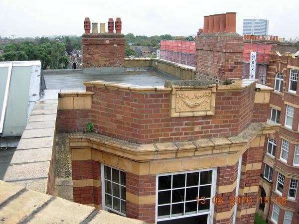 f1587-dscn3072-mansion-blk-roof